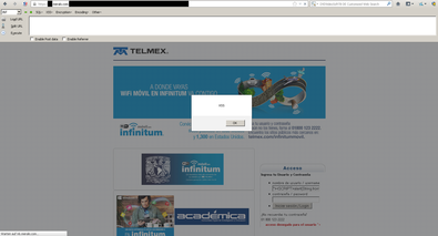 Screenshot of the xss issue.
